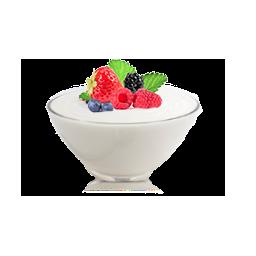 Zdjęcie poglądowe jogurtownicy